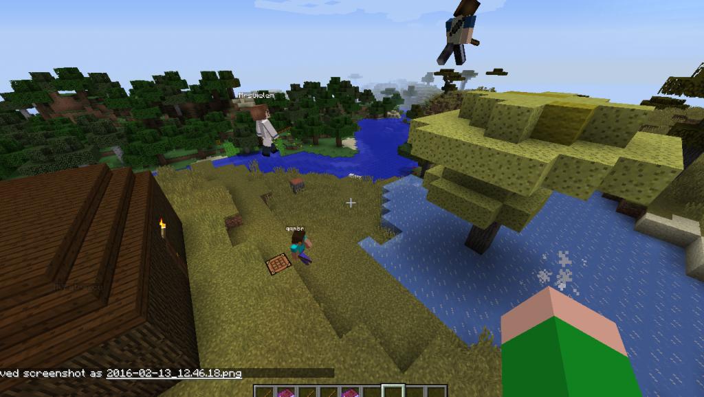 TEFL and Minecraft?