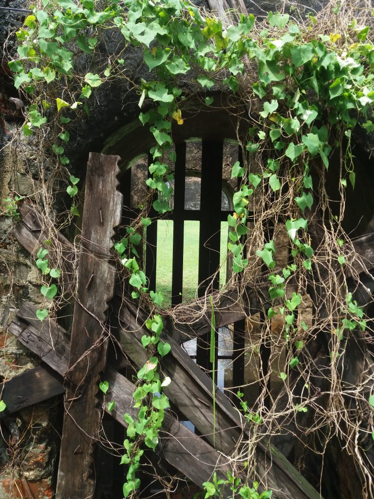 Covered-Gate-Vines